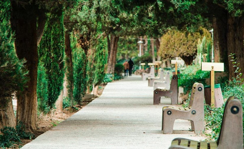 Paved walkway in a park lined with stone benches