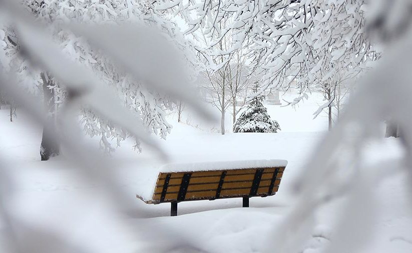 A wooden bench in a snow-covered park
